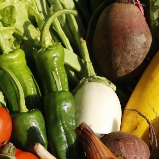 Bertako produktu ekologikoak